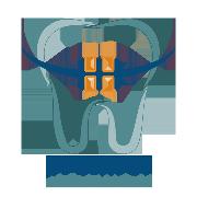 Premier Orthodontics Logo