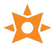 Learning Ninjas® Logo