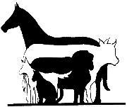 St George Veterinary Practice Logo