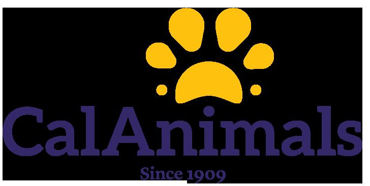California Animal Welfare Association