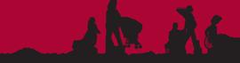 Association of Maternal & Child Health Programs